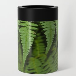 Fern Can Cooler