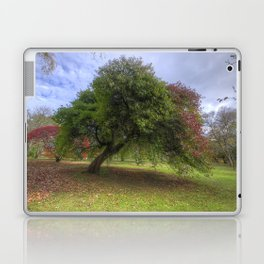 Waiting for Fall Laptop & iPad Skin