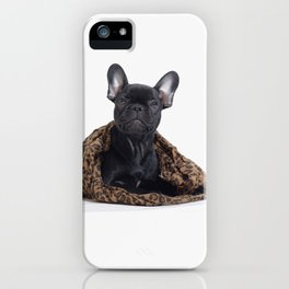 French Bulldog Welpen iPhone Case