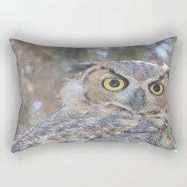 Young Owl at Noon Rectangular Pillow