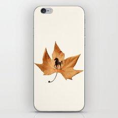Horse on a dried leaf iPhone & iPod Skin