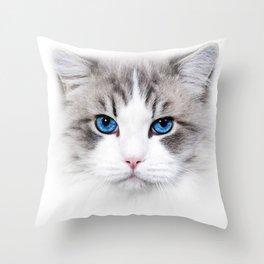 Pussy Cat Love Kitten Cute Blue eye Throw Pillow