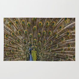 Peacock Plumage Rug