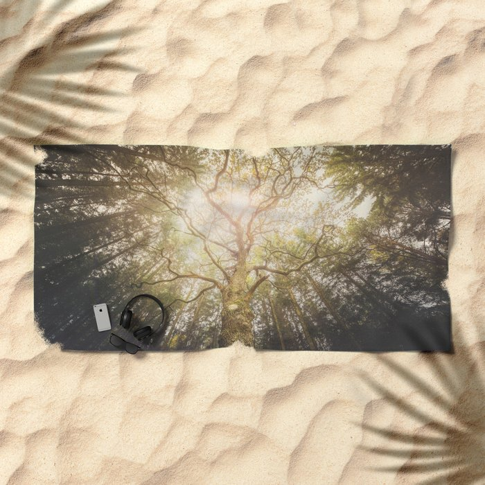 I found a tree in the forest Beach Towel