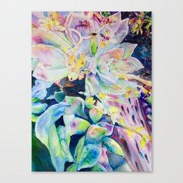 Succulents in California Canvas Print