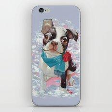 Winter Love. iPhone & iPod Skin