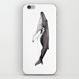 North Atlantic Humpback whale iPhone Skin