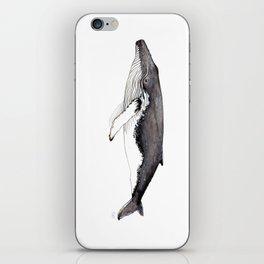 North Atlantic Humpback whale iPhone Skin