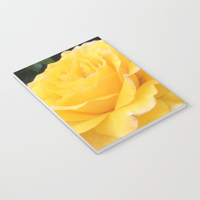 My Yellow Rose Notebook