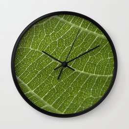 Fig tree leaf Wall Clock