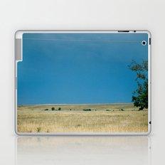 Field of Blue  Laptop & iPad Skin