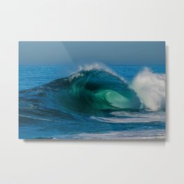 Mermaid's Tail Metal Print