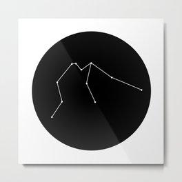 AQUARIUS (MINIMALIST DESIGN) Metal Print