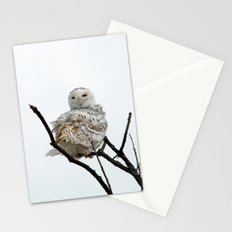 Twist and Shout (Snowy Owl) Stationery Cards