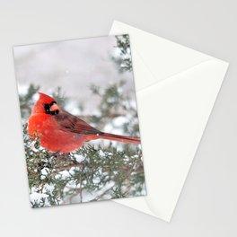 Winter's Beauty Cardinal Stationery Cards