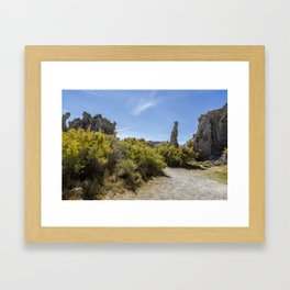 Mono Lake Tufa, No. 3 Framed Art Print