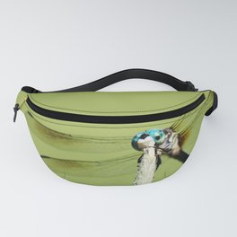 That's a Dragonfly Fanny Pack