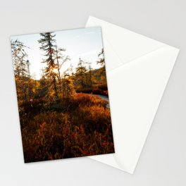 Larch Madness | Tamarack Trees in the Adirondack Mountains Stationery Cards