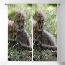 Cheetah20150906 Blackout Curtain