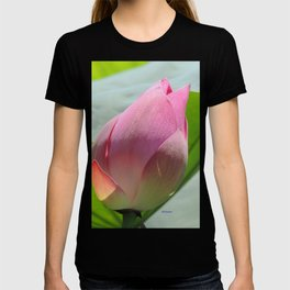 Lotus Bud in West Lake T-shirt