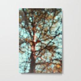 Obscurred View: Cedar in Teal Sky Metal Print