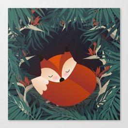 Cute Sleping Forest Fox Canvas Print