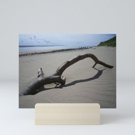 DRIFTWOOD ON BEACH NEAR CROW POINT NORTH DEVON Mini Art Print
