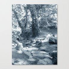 Et au milieu coule la rivière  Canvas Print