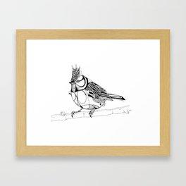 Crested Tit Framed Art Print