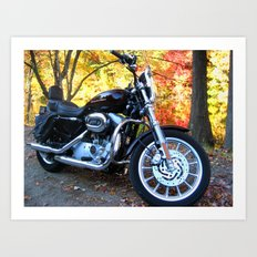 Sportster in Fall Art Print