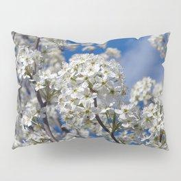 Bradford Pear Blooms Pillow Sham