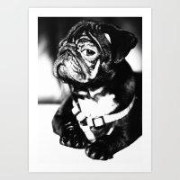 pug Art Prints featuring Pug by Falko Follert Art-FF77