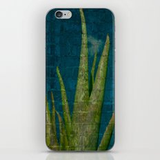Aloe  iPhone & iPod Skin
