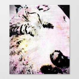 Kitty IN Color Canvas Print