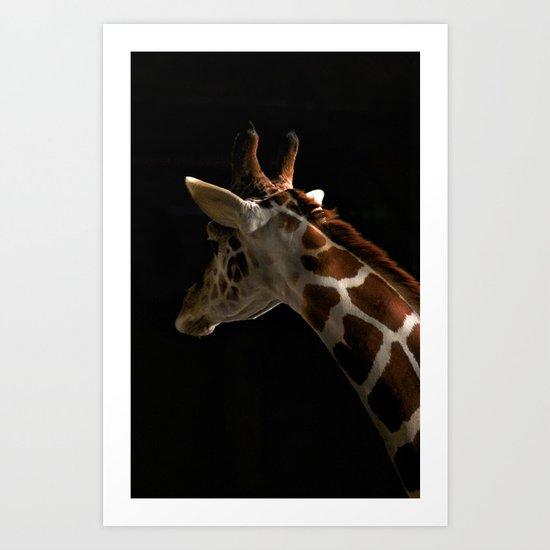 Giraffe2 Art Print