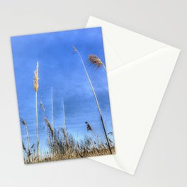 Lake Grass Abstract Stationery Cards