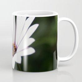 Daisy flower blooming close-up Coffee Mug
