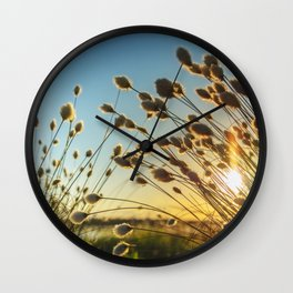 Cotton grass from the high moorland Wall Clock