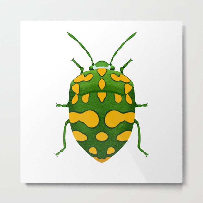 Physic Nut Stink Bug Metal Print