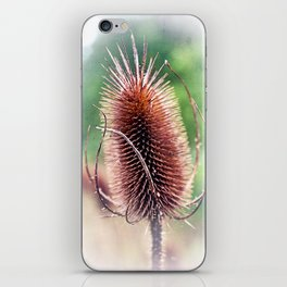 Solitaire iPhone Skin