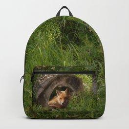 Fox in a Log Backpack