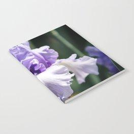 Lavender Iris Notebook