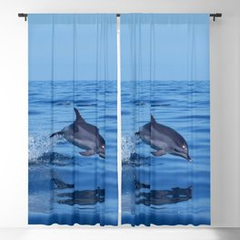 Spotted dolphin jumping in the Atlantic ocean Blackout Curtain