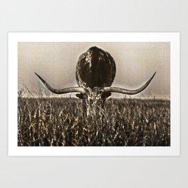 Old Photo of Longhorn Art Print