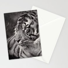 The mysterious eye of the tiger. BN Stationery Cards