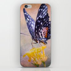 Butterfly Invention iPhone & iPod Skin