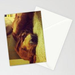 Sleepyhead Stationery Cards
