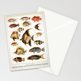Adolphe Millot - Poissons des coraux - French vintage zoology poster Stationery Cards