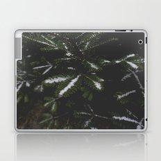 Firs. Laptop & iPad Skin