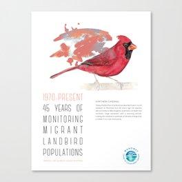 45 Years of Monitoring Landbird Populations - Northern Cardinal   Canvas Print